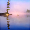 45 Adirondacks Forked Lake Tree an Morning Mist July 1999