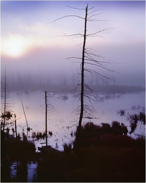 45 Adirondacks Long Lake Shaw Pond Sunrise 1 Graylands September 1997