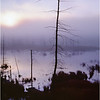45 Adirondacks Long Lake Shaw Pond Sunrise 1 Graylands September 1997