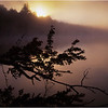 45 Adirondacks Forked Lake Brandreth Inlet Sunrise 2 July 1998