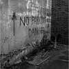 67 Mohawk Valley Herkimer Alleyway 2 July 2006