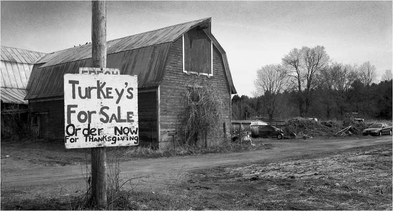 67 Adirondacks NY Washington County Turkey Sale October 2004