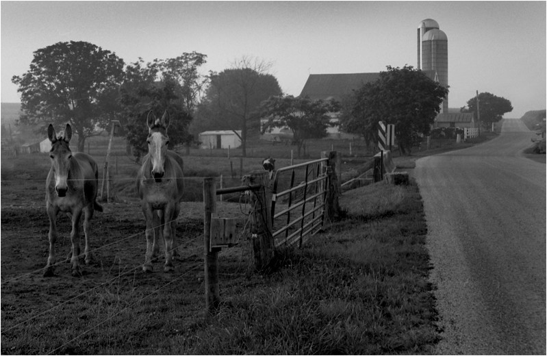 67 Lancaster County Pennsylvania Amish Country Scene 13 July 1996