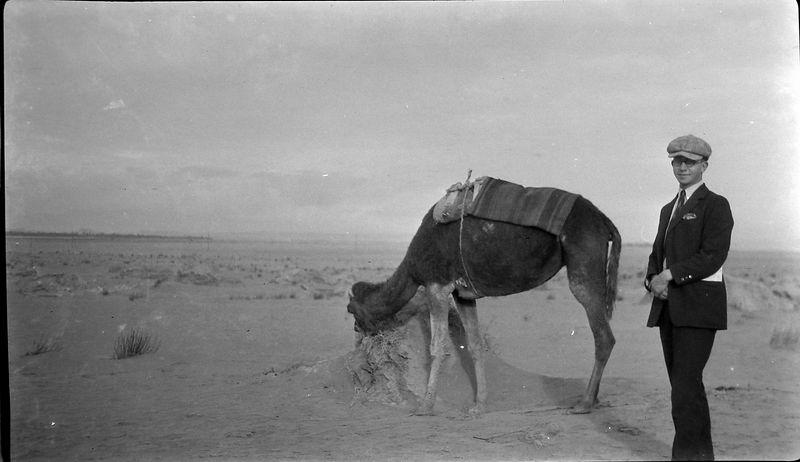 Bndl#16 #74a Rowland Stebbins in desert with camel N Africa