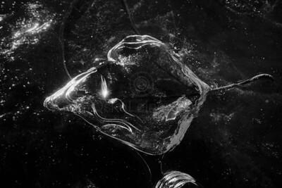Frozen Water VI (Leaf)