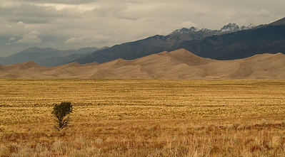 Dunes and Prairie