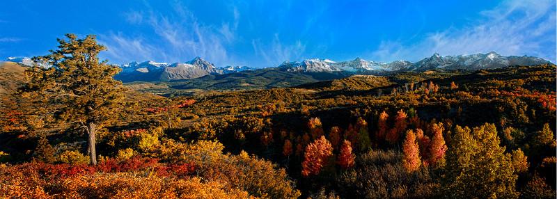 Ridgeway Autumn
