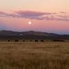 South Creek Ranch - Live Auction - 5
