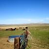 South Creek Ranch - Live Auction - 16