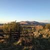 South Creek Ranch - Live Auction - 8