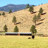 South Creek Ranch - Live Auction - 9