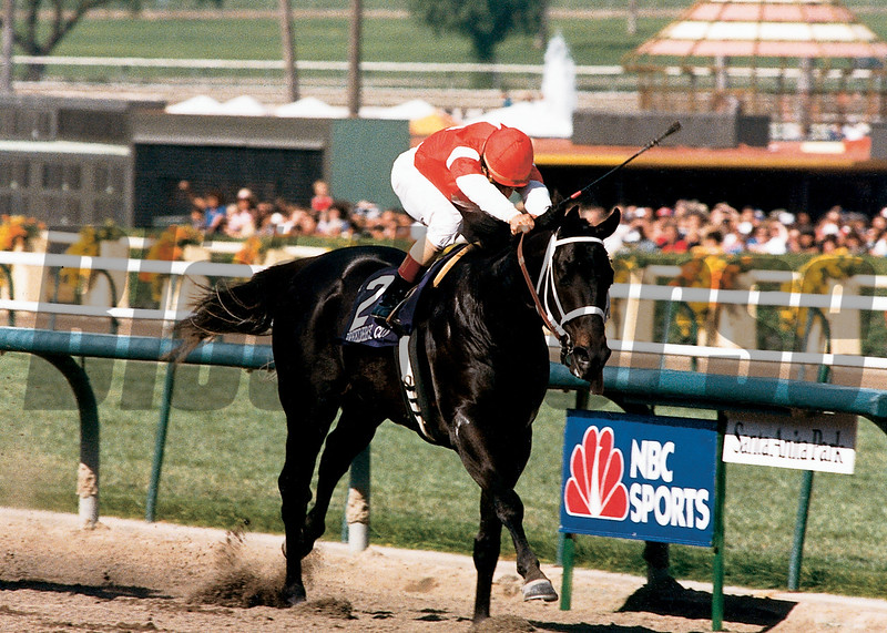 Capote wins the 1986 Breeders' Cup Juvenile<br /> Skip Dickstein Photo