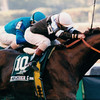 Timber Country wins the 1994 Champagne Stakes.<br /> Photo by: Skip Dickstein