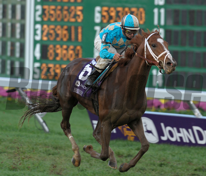 Photo By Skip Dickstein -English Channel with jockey John Velazquez winning the Turf at The Breeders' Cup at Monmouth Park October 27, 2007.