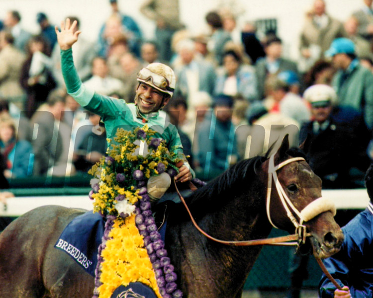 Gulch after winning the 1988 Breeders' Cup Sprint<br /> Photo by Skip Dickstein