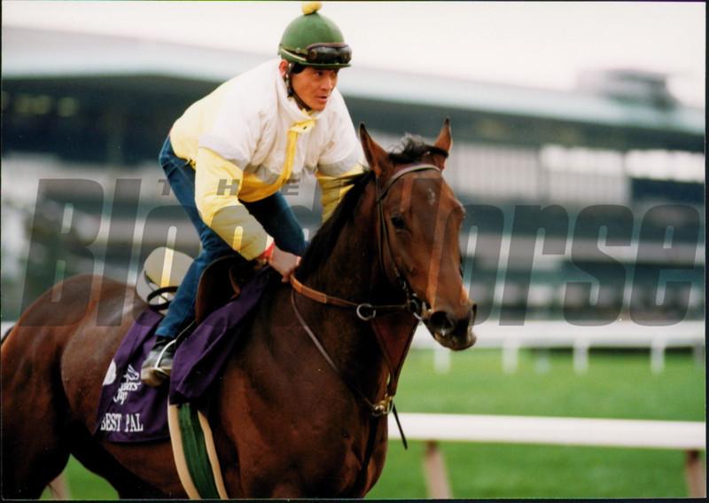 Best Pal, Pacific Classic, Del Mar, 1991