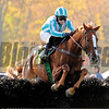 Good Night Shirt ridden by William Dowling, trained by Jack Fisher and owned by Harold A. Via Jr. makes the final fence of The Grand National Steeplechase GI at the Far Hill Race Course in Far Hills, New Jersey October 18, 2008.  The event was a 2 5/8 mile contest over National Fences.<br /> Skip Dickstein Photo