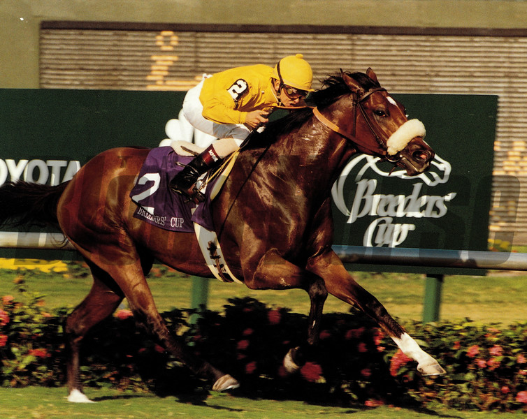 Lure wins the 1992 Breeders' Cup Mile at Gulfstream Park with Mike Smith aboard<br /> Skip Dickstein Photo
