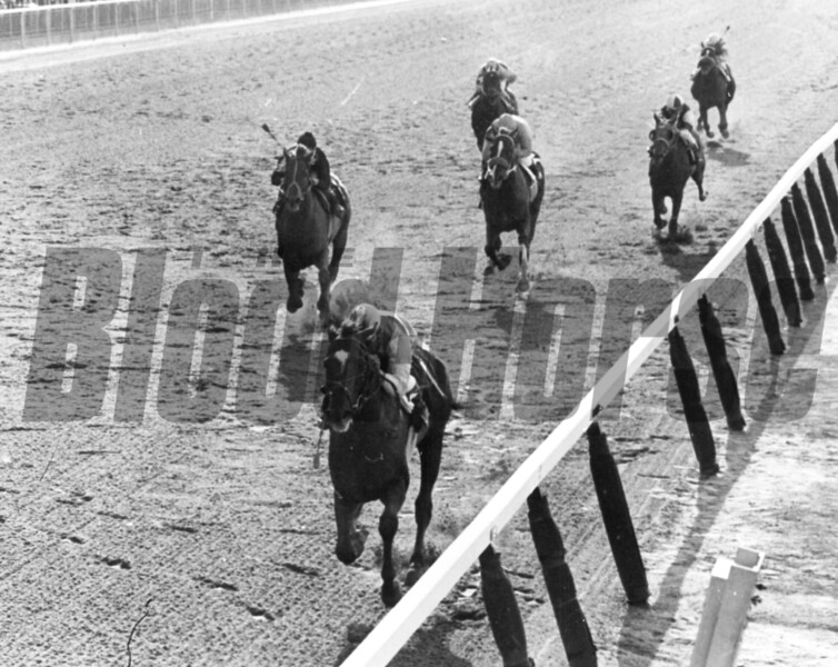 Arts and Letters winning 1969 Belmont Stakes<br /> Bob Coglianese Photo