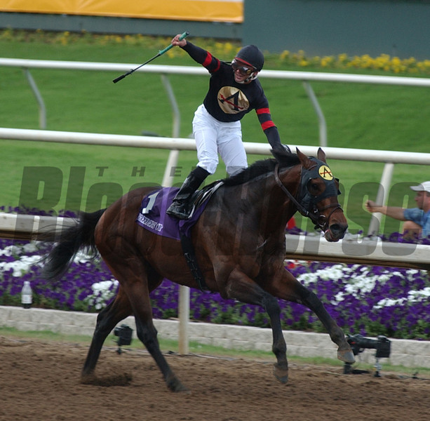 ALEXANDER BARKOFF PHOTO<br /> Ghostzapper wins the Breeders Cup Classic as Javier Castellano reacts