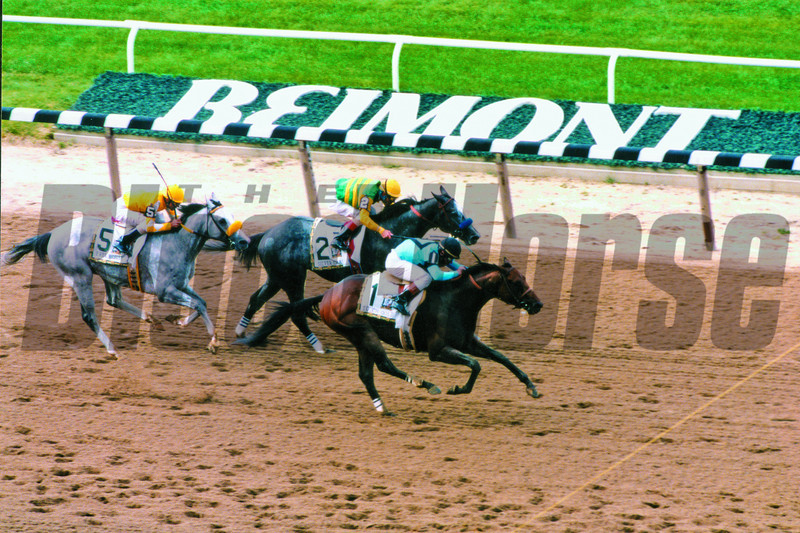 Touch Gold surprises Silver Charm, Belmont Stakes 1997<br /> Photo by Rick Samuels