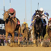 Dakota Phone (left) wins the 2010 Breeders' Cup Dirt Mile<br /> Skip DIckstein Photo