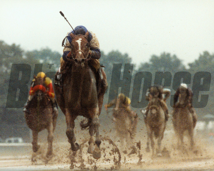 Strategic Maneuver wins the 1993 Grade I Matron Stakes at Belmont Park.<br /> Photo by: Skip Dickstein