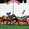 Dubai 2002<br /> Cristope Soumillion blows kisses to the crowd as he wins the Dubai Duty Free on Terre A Terre from Noverre and Frankie Dettori<br /> ©Trevor Jones