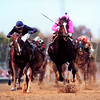 Tiznow wins the 2000 Breeder's Cup Classic.<br /> Skip Dickstein Photo