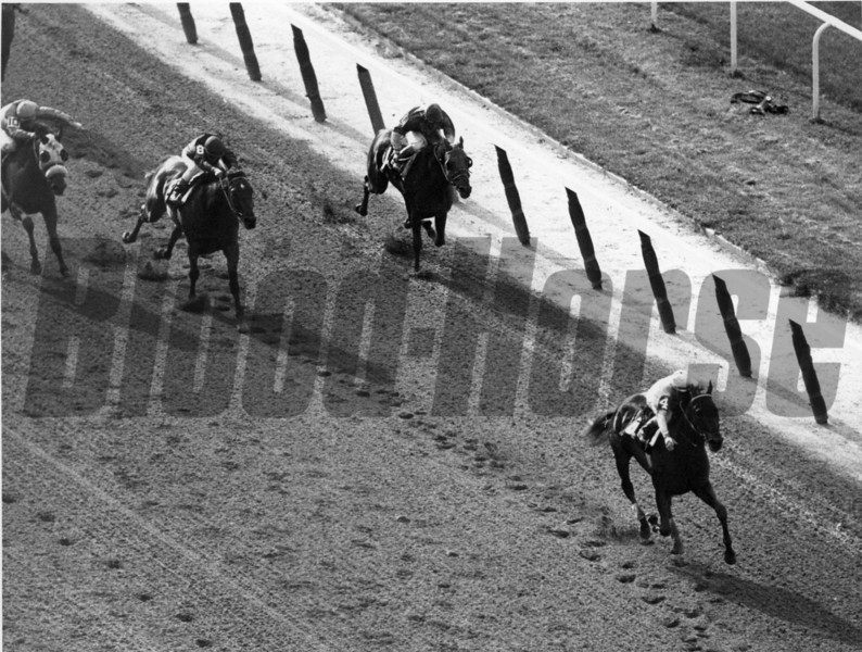 Pass Catcher winning the 1971 Belmont Stakes<br /> NYRA Photo
