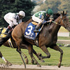 Kentucky Cup day at Turfway Park on Sept. 13, 2003.<br /> Caption: Perfect Drift with Pat Day up defeats Congaree with Edgar Prado to win the Kentucky Cup Classic (gr. II).<br /> KyCup03Origs1<br /> image85<br /> Photo by Anne M. Eberhardt