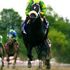 Orientate won the 2002 Breeders' Cup Sprint. <br /> Adam Coglianese