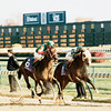 BreedersÕ Cup JuvenileÑ1998.<br /> Answer Lively winning over AlyÕs Ally.<br /> Photo by Skip Dickstein