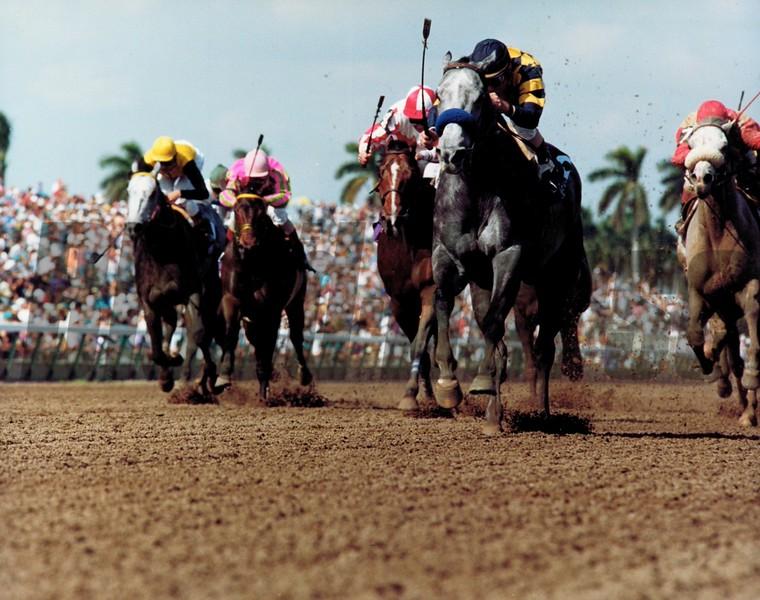 Thirty Slews wins the 1992 Breeders' Cup Sprint<br /> Skip Dickstein