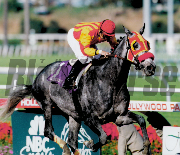 Skip Away wins the 1997 Breeders' Cup Classic.<br /> Skip Dickstein Photo