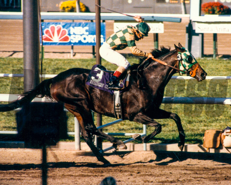 Skywalker wins the 1986 Breeders' Cup Classic at Santa Anita.<br /> Photo by: Anne M. Eberhardt