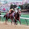 Spain wins the 2000 Breeders' Cup Distaff<br /> Skip Dickstein Photo