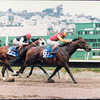 Best Pal, Pacific Classic, Del Mar, 1991
