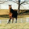 Sunshine Forever<br /> Anne M. Eberhardt Photo