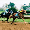Charismatic wins the 1999 Lexington Stakes at Keeneland.<br /> Photo by: Anne M. Eberhardt