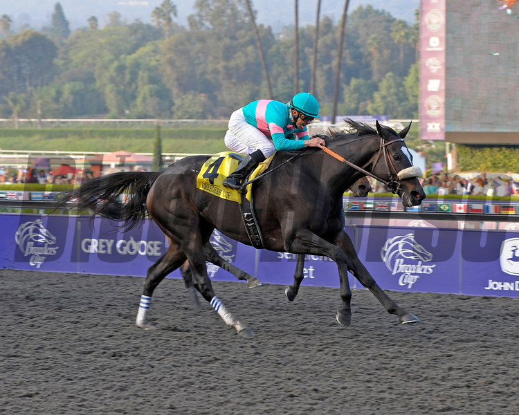 Caption: <br /> Zenyatta with Mike Smith wins the Breeders' Cup Classic, owners Ann and Jerry Moss, trainer John Shirreffs and wife Dottie Ingordo-Shirreffs.<br /> Breeders' Cup Saturda at Oak Tree/Santa Anita on Nov. 7, 2009, in Pasadena, California.<br /> Origs1  image594<br /> PHoto by Anne M. Eberhardt