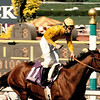 Lure wins the 1993 Breeders' Cup Mile at Santa Anita Park with Mike Smith aboard<br /> Skip Dickstein Photo