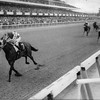Riva Ridge wins the 1971 Champagne Stakes.<br /> Photo by: Bob Coglianese/NYRA