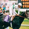 Tikannen wins the 1994 Breeders' Cup Turf.<br /> Skip Dickstein Photo