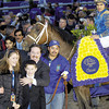 Caption: CLASSSIC: Invasor in the winners circle with Fernando Jara and trainer Kiaran McLaughlin and family<br /> Breeders' Cup day on November 4, 2006, at Churchill Downs in Louisville, Ky.<br /> Origs 2 image190<br /> Photo by Anne M. Eberhardt<br /> Caption: CLASSSIC: Invasor in the winners circle with Fernando Jara and trainer Kiaran McLaughlin and family<br /> Breeders' Cup day on November 4, 2006, at Churchill Downs in Louisville, Ky.<br /> Origs 2 image190<br /> Photo by Anne M. Eberhardt<br /> Anne M. Eberhardt/Blood-Horse Publications<br /> HORSE_OF_THE_YEAR_2006