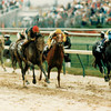Winning Colors on the lead in the 1988 Breeders' Cup Distaff.<br /> Skip Dickstein Photo