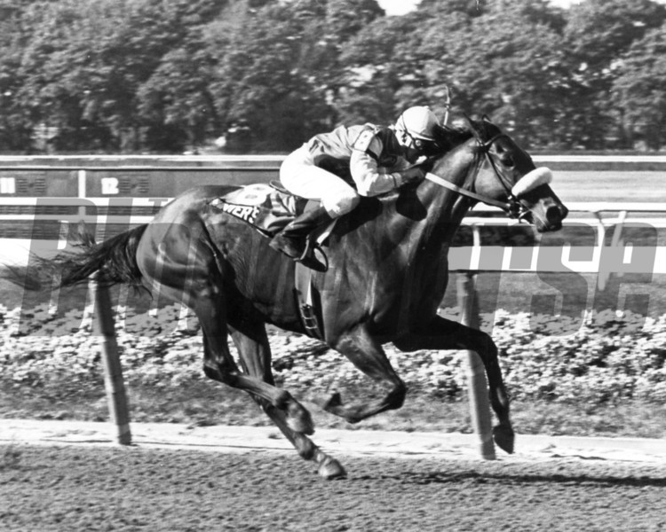 Winter's Tale with Jeffrey Fell up winning 1980 Marlboro Cup<br /> Photo by Bob Coglianese