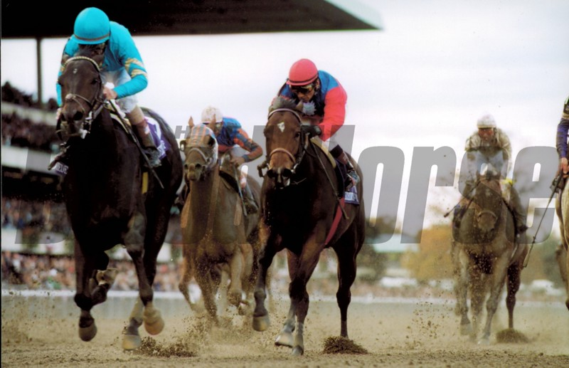 Squirtle Squirt wins the 2001 Breeders' Cup Sprint<br /> Skip Dickstein Photo