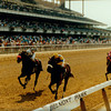 Sky Beauty wins the 1993 Coaching Club American Oaks at Belmont Park.<br /> Photo by: Skip Dickstein