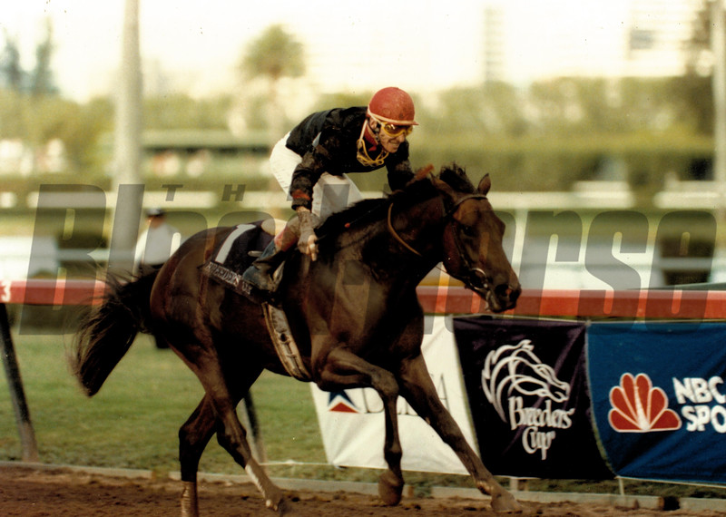 Rhythm wins the 1989 Breeders' Cup Juvenile<br /> Skip Dickstein Photo